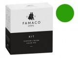 Kit de teinture Vert Herbe pour cuir Famaco