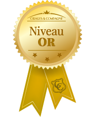 niveau-or.png